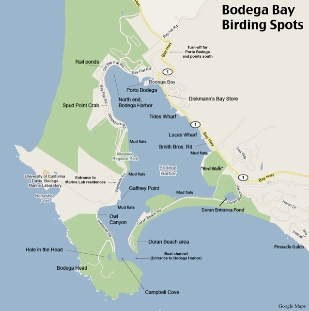 bodega bay hindu dating site Bodega bay lodge is an unexpected getaway where wine country meets the coast overlooking the rugged sonoma coastline and the pacific ocean book now.